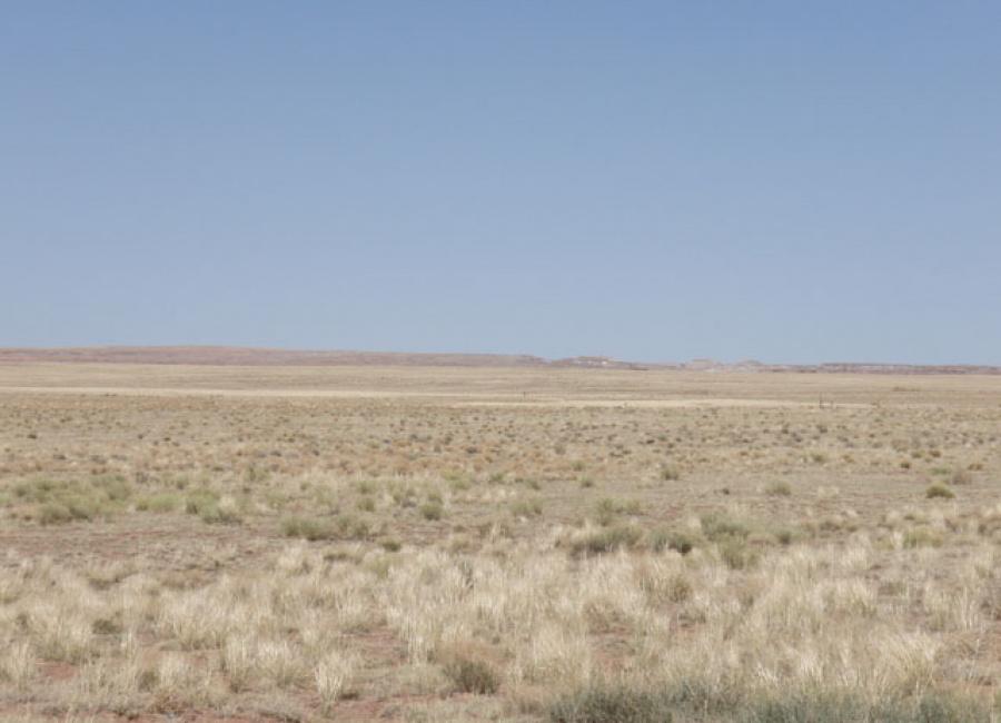 Holbrook, Arizona 86025, ,Land,Sold,1077