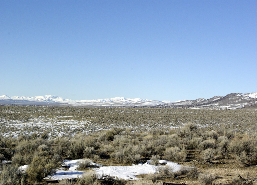 Spring Creek, Nevada 89815, ,Land,Sold,1079