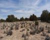 Saint Johns, Arizona 86502, ,Land,Sold,1088