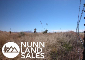 Sun Sites, Arizona 85643, ,Land,For Sale,1090