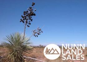 Pearce, Arizona 85625, ,Land,For Sale,1092